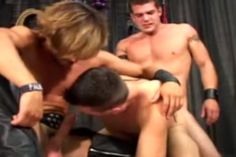 gay Porn - Jeff Palmer raw bunch