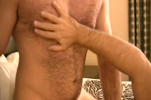 MJ - older Bear And young Bear In bed