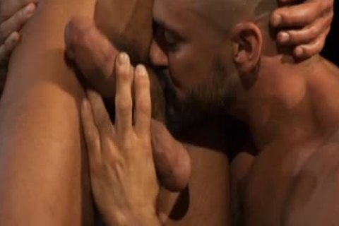 Hung: The best Of David Anthony