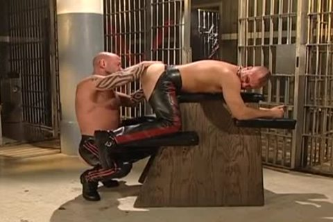 penis Wolf likes To fuck With Jacob Scott