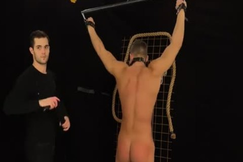 Muscled Hunks acquire Bums Damaged In A Merciless thraldom & Discipline Game